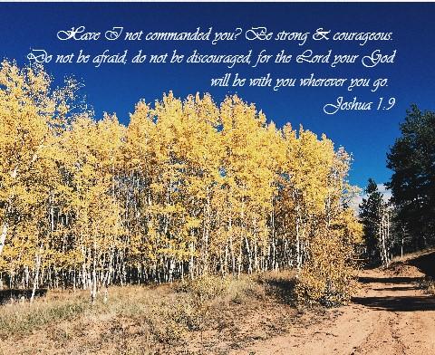 Joshua 1:9 Canvas Print 30x24
