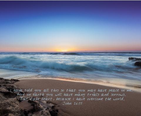 John 16:33 Canvas Print 20x16