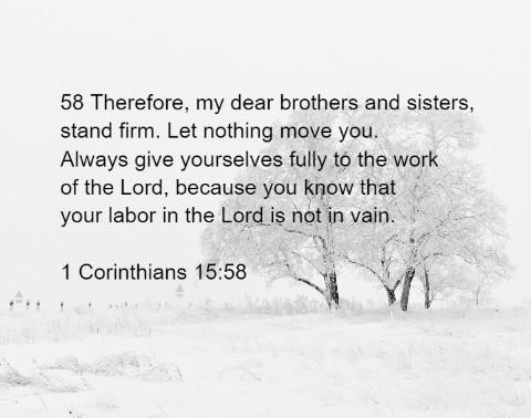 1 Corinthians 15:58 Canvas Print 16x12