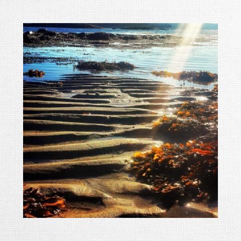 Canvas Print 12x12 #49300