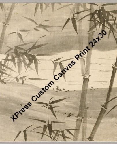 24 x 30 Custom Canvas Print XPress #50946