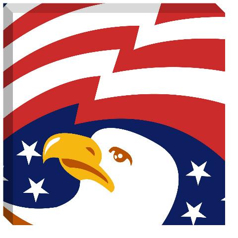 Bald Eagle Canvas Print 24x24